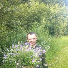 максим, 32 года, Данилов