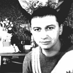 Роман, 28 лет, Павлоград