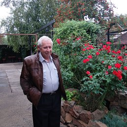 Сергей, 64 года, Белицкое