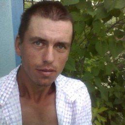 Коля, Анапа, 39 лет