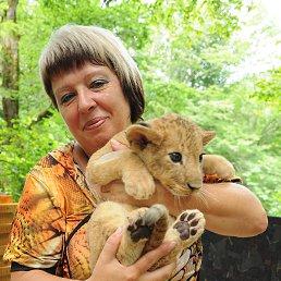 Наташа, 57 лет, Миллерово