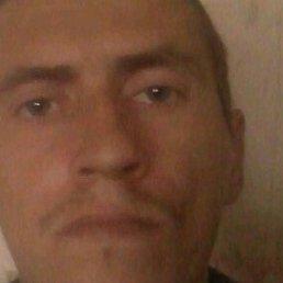 Сергей, Бердянск, 41 год