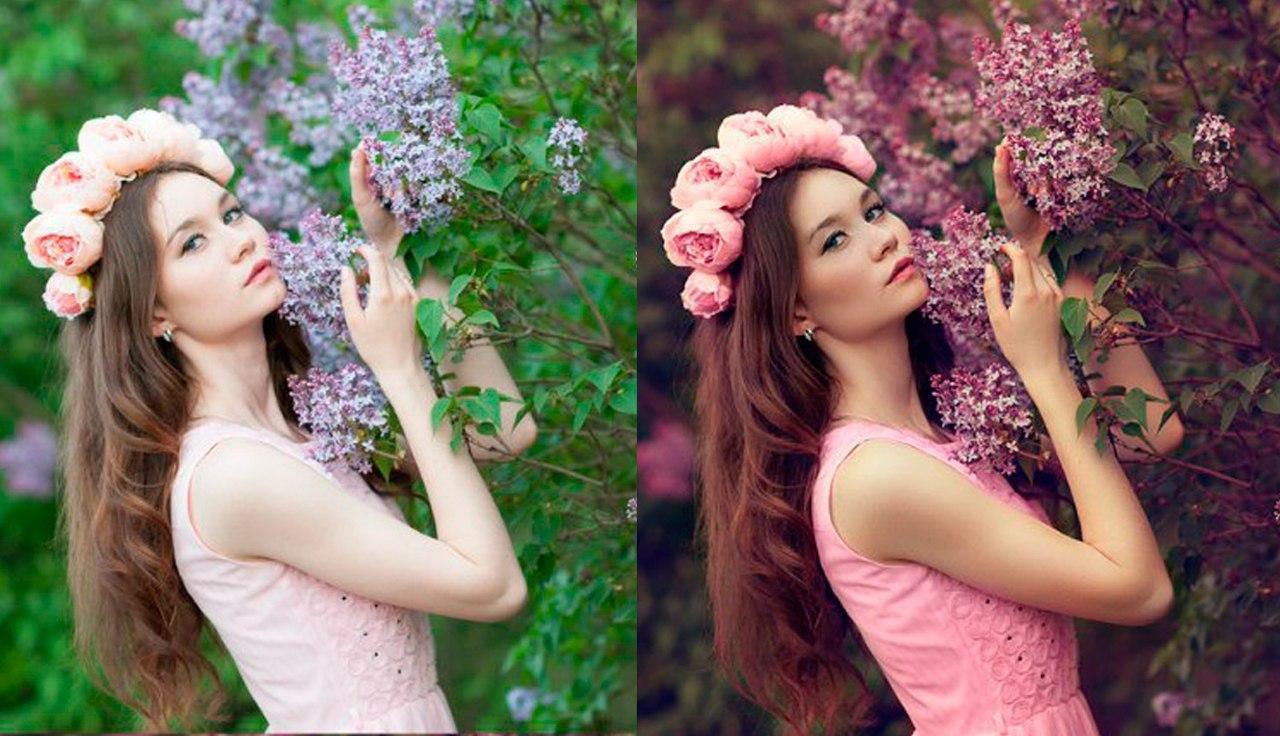 Красивая обработка фотографий цветогармонизация отличие ивы
