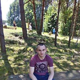 Фото Коля, Белополье, 26 лет - добавлено 28 июня 2017