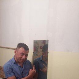 Дима, 37 лет, Крымск