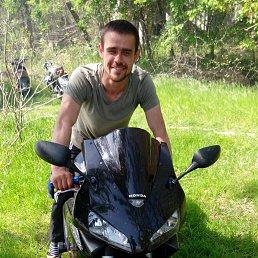 slavik, 28 лет, Рени