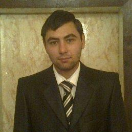 Роман, 27 лет, Обоянь