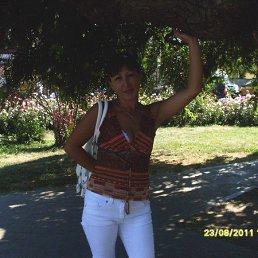 мила, 41 год, Александрия