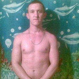 Иван, 25 лет, Килия