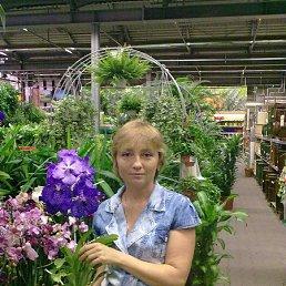 Елена, Артемовск, 52 года