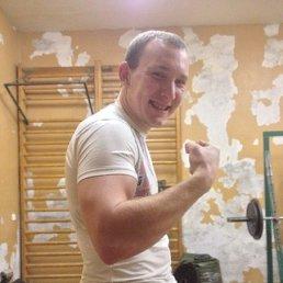 Андрей Вадимович, 25 лет, РОГАЧЁВ