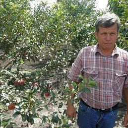 Сергей, 61 год, Пологи