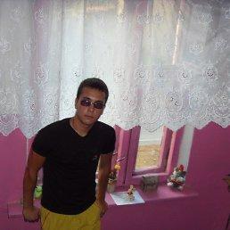 Евгений, 29 лет, Правдинск