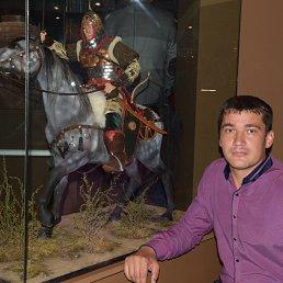 Ильдар, 42 года, Буинск