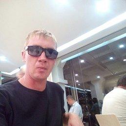 Виталик, 29 лет, Воронеж