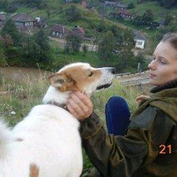 Ангелина, 23 года, Кын