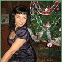 Светлана, 41 год, Тула