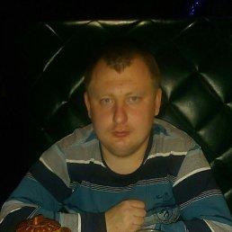 Миша, 28 лет, Унеча