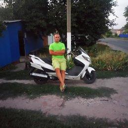 максим, 32 года, Ленинградская
