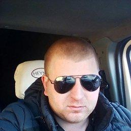 Aleksandr, 33 года, Красный Холм