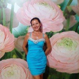 Светлана Зандер, 44 года, Новокубанск