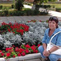Валентина Соловиева, 61 год, Павловск