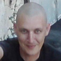 Sashenyka, 40 лет, Первомайский