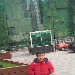Антон, 26 лет, Климовск