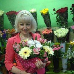 Светлана, 40 лет, Борисполь