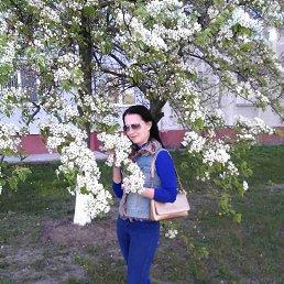 Лена, 30 лет, Белополье