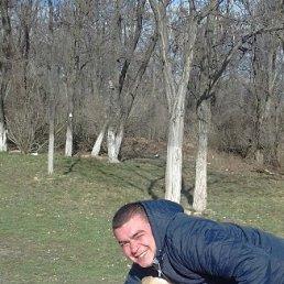 Sergej, 27 лет, Артемовск