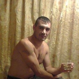 Виталий, 41 год, Рудня
