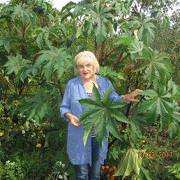 НИНА, 65 лет, Белгород