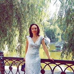 Татьяна, 42 года, Каменское