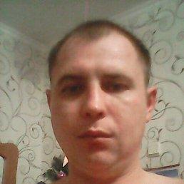 Костя, 36 лет, Жуковский