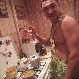 Денис, 29 лет, Шебекино