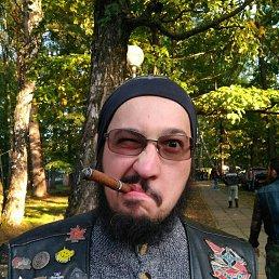 Кирилл, 31 год, Щербинка