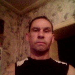Андрей, 44 года, Волгодонск