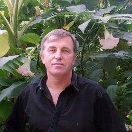 Сергей, 56 лет, Сватово
