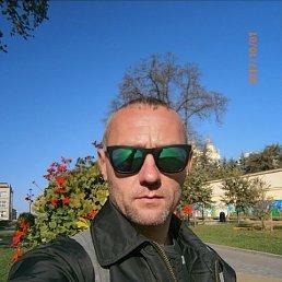 Андрей, 44 года, Димитров