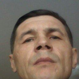 Алексей, 44 года, Канаш