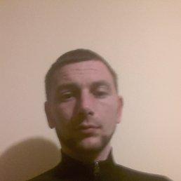 Роман, 30 лет, Павлоград