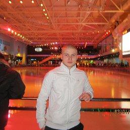 Лев, 28 лет, Харцызск