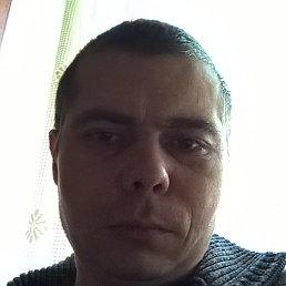 Руслан, 37 лет, Вольногорск