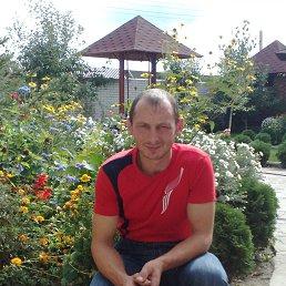 sergey, 42 года, Олевск