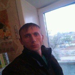 Андрей, 37 лет, Кулунда