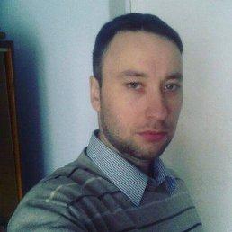 Олександр, 30 лет, Житомир