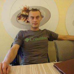 Igor, Донской, 36 лет