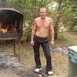 алексей, 36 лет, Ливны