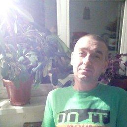 Дмитрий, 39 лет, Борисоглебск